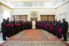 le-pape-francois-et-les-eveques-d-afrique_article.jpg