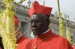 Cardinal_Robert_Sarah_center_in_St_Peters_Square_on_Palm_Sunday_March_24_2013_Credit_Sabrina_Fusco_CNA_CNA_11_12_14.jpg