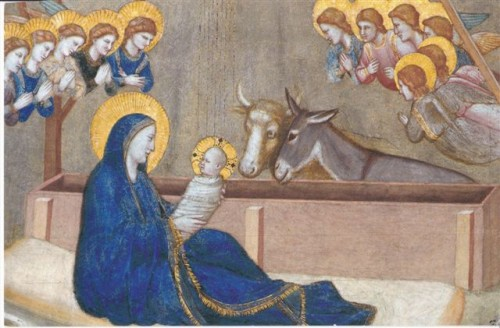Assisi Nativity.JPG