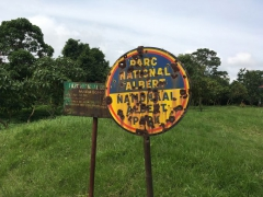 virunga-national-park-1-681x511.jpg