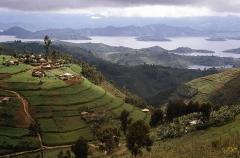 Rwanda 526981365-612x612.jpg
